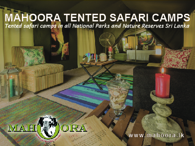 mahoora tented safari camps sri lanaka